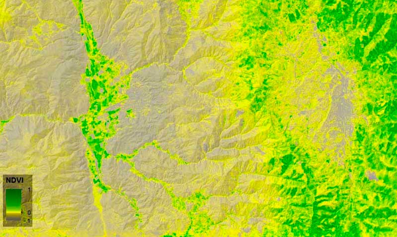 Calculating Normalized Differential Vegetation Index (NDVI) – GeoGeek